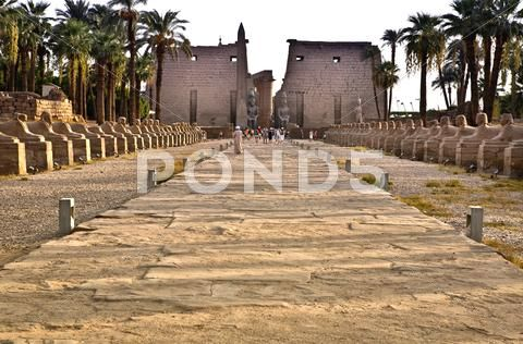 Avenue of sphinxes between karnak and luxor temples Stock Photos