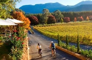 Boynton's Feathertop Winery, near Bright, Victoria, Australia. Enjoy a getaway here >> http://www.visitvineyards.com/home/surveys-competitions-win-prizes/win-a-winery-getaway-at-boyntons-feathertop-sept-october-2012