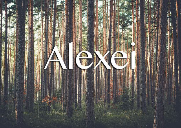 """Meaning: Defender, from the Latin Alexius. Informal version: Aloysha It rhymes with """"hay"""" or """"stay"""". Alexei Alexeyevich Abrikosov was a nobel prize winn"""