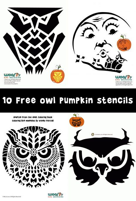 Ten free owl pumpkin stencils to carve for Halloween.