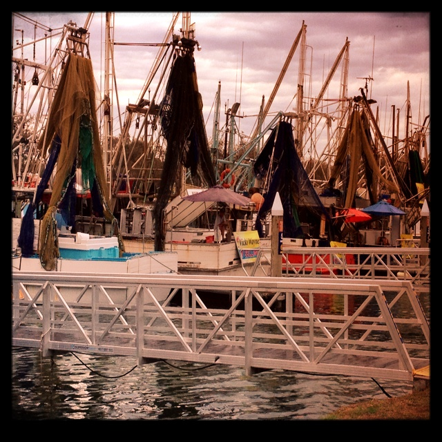 Fish Markets - Main Beach QLD