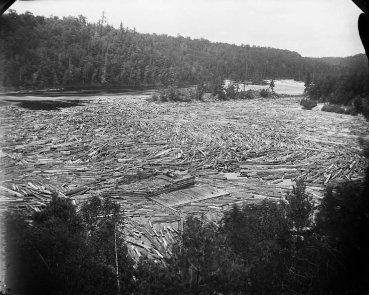 Logs - View from Summer House, Gatineau Mills. (William James Topley/Library and Archives Canada/PA-027067)