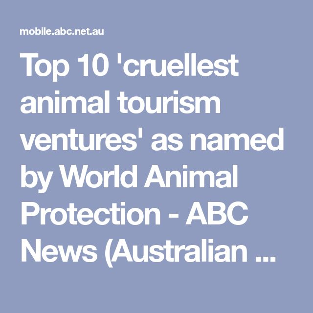 Top 10 'cruellest animal tourism ventures' as named by World Animal Protection - ABC News (Australian Broadcasting Corporation)