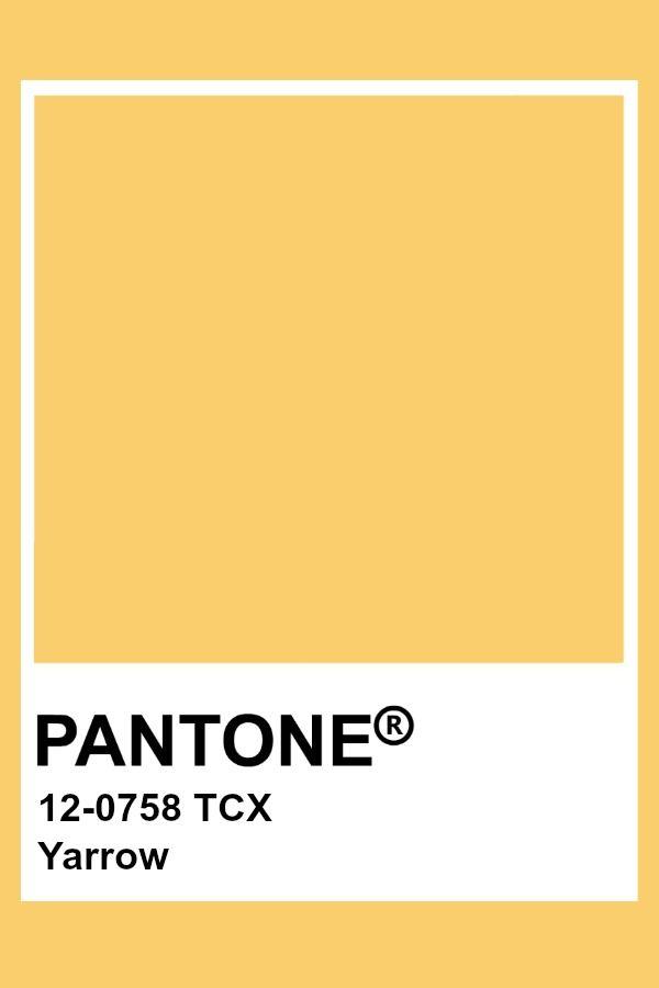 Pantone Yarrow Pantone Color Pantone Colour Palettes