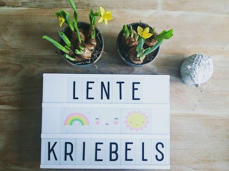 """26 Likes, 1 Comments - T I R Z A A L I N E (@tirsza) on Instagram: """"Kom maar door, zon! ☀ #zininvoorjaar #lentekriebels #sunstaywithus #zon #loveit…"""""""