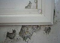 how to repair outside of storm door my larson storm door has a decorative rectangle, doors, My Pella Storm Door