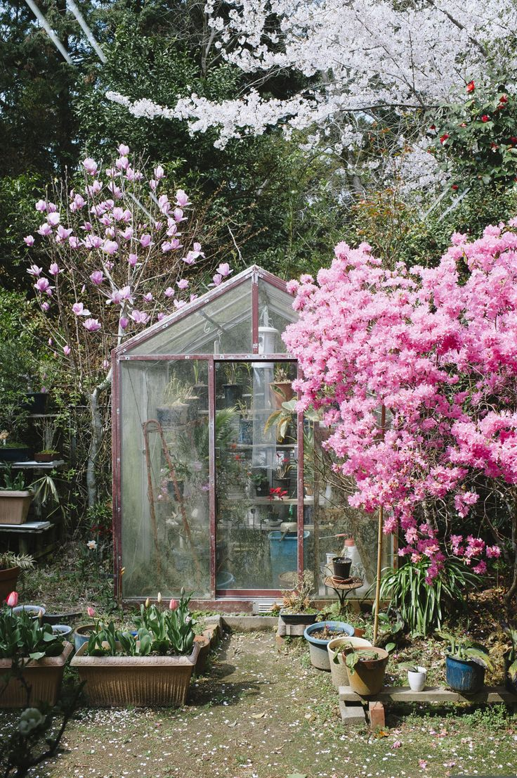 best 10+ contemporary greenhouses ideas on pinterest