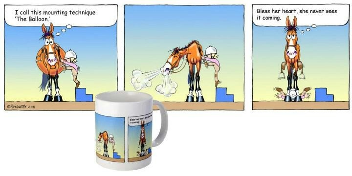 Fergus the horse