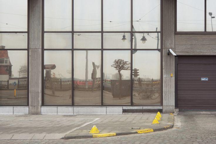 #diary #rivkahyoung #17022015 #antwerp #belgium #fernfeld #window #reflection #greysky #tree #bicycle