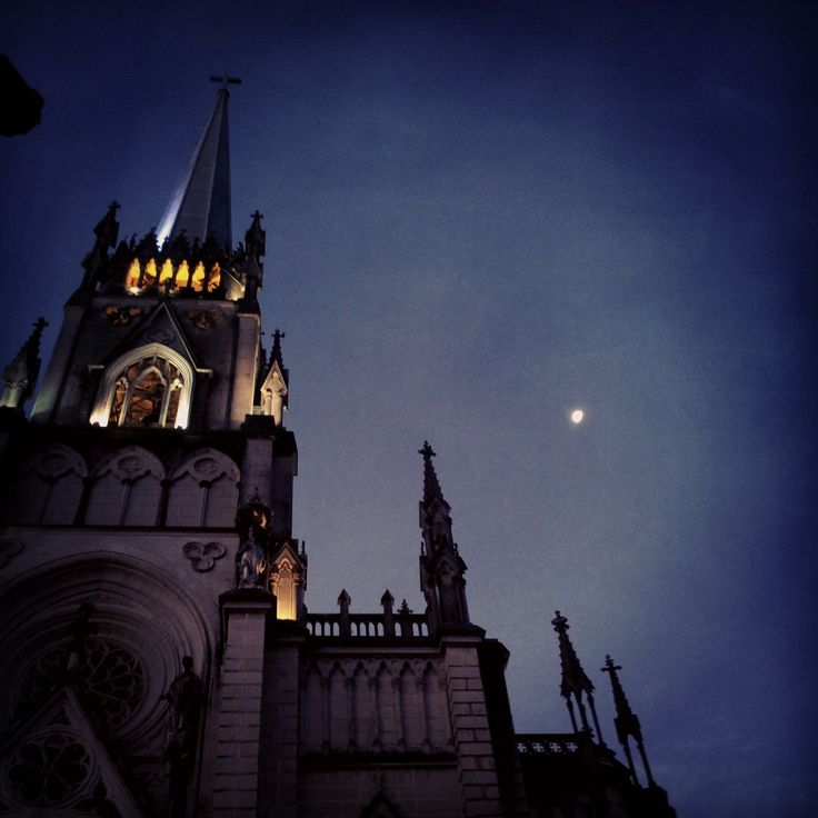 Catedral São Pedro de Alcântara . -Petrópolis -Rio de janeiro -Brasil