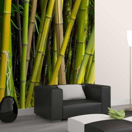 Papier peint bambou Deco murale Design  www.loftboutik.com
