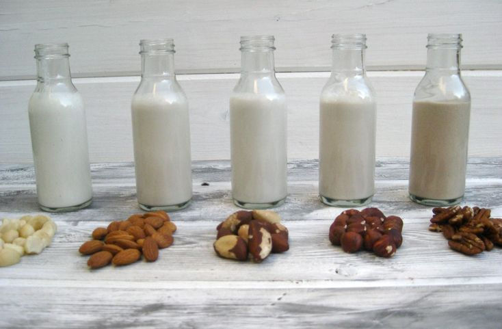 how to make your own nut or grain milks. Almonds, cashews, macadamias, Brazil nuts, hazelnuts, pecans, pistachios, coconuts, soybeans, hemp seeds, pumpkin seeds, sunflower seeds, sesame seeds, sacha inchi seeds, flaxseeds, quinoa, millet, rice, and oats can all be liquefied into delicious milks.