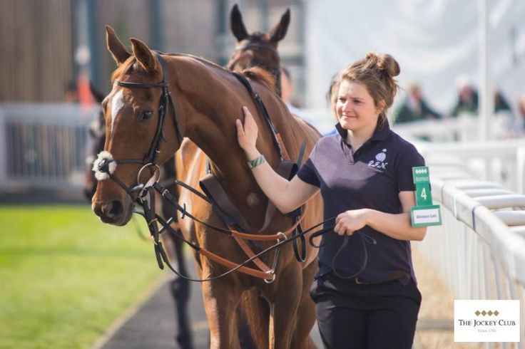 Silviniaco Conti & his lass Gemma Groves yesterday before he went out to win his second Betfred Bowl @AintreeRaces