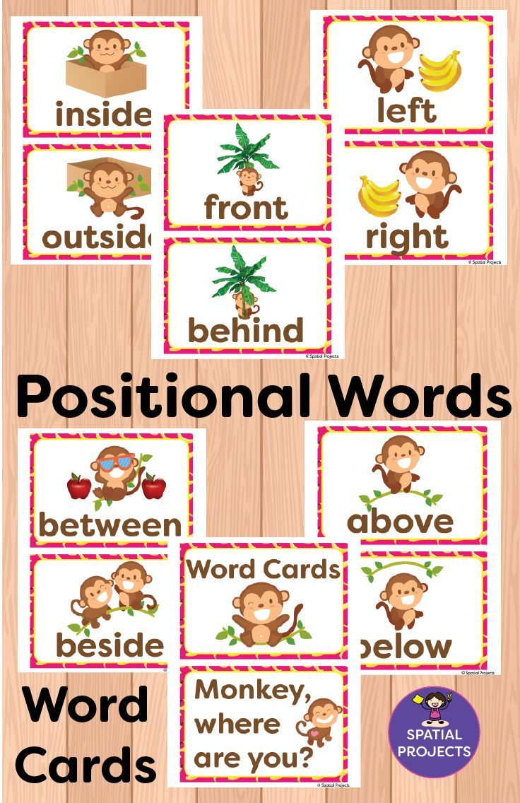 Check Out This Spatial Concepts Resource It Is Filled With Positional Words Activiti Positional Words Kindergarten Positional Words Activities Word Activities [ 1136 x 736 Pixel ]