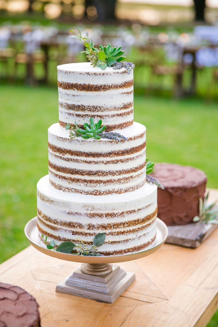 Succulent Studded Tiered Naked Cake by PPHG pastry chef Jessica Grossman at Alexandra & Brian's southern lavender and herb inspired wedding at Lowndes Grove Plantation | Charleston, SC | Real Wedding featured on The Knot |  Photo by Dana Cubbage Weddings