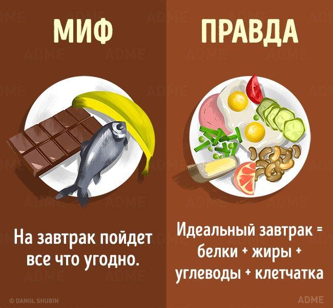 Мифы о диетах и правильном питании