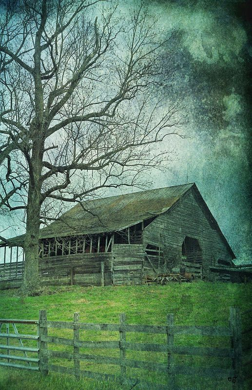Barn on a rainy day. Fun place to seek shelter.