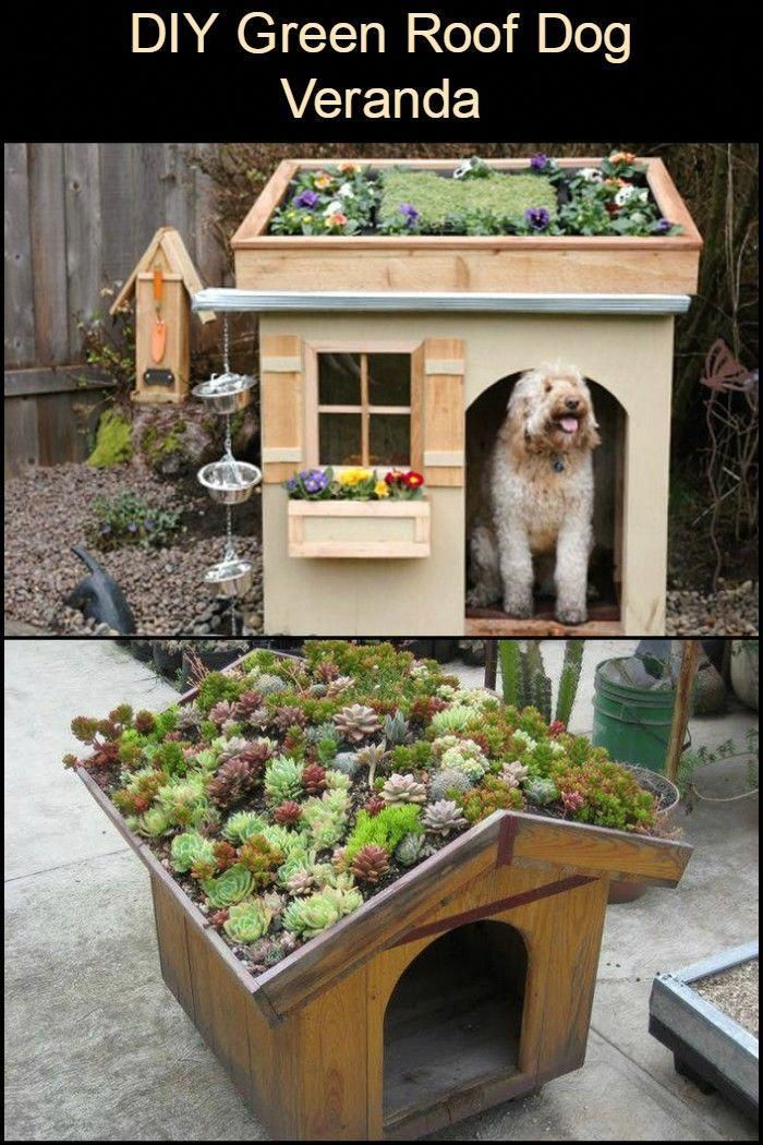 Green Roofs And Great Savings Green Roof Cool Roof Roofing Diy