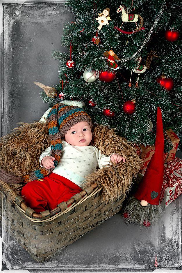 Фото Новорожденных, Малышка в корзинке под ёлкой, Фотосессия Новорожденного, Фото Новорожденного ребенка, Детский Фотограф, Фотосессия Детей, Фотостудия SILVERCAT