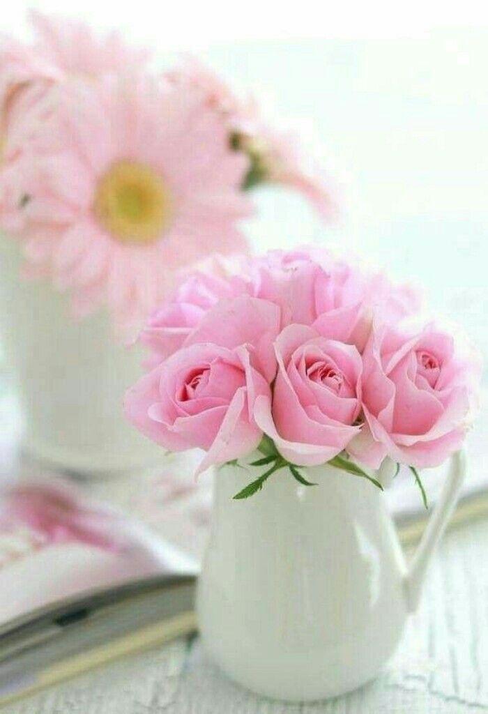 можно доброе утро картинки розовые розы депрессию