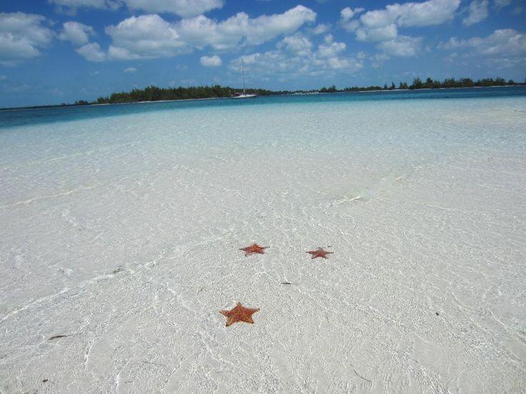 Playa Sirena - Review of Sirena Beach, Cayo Largo, Cuba - TripAdvisor