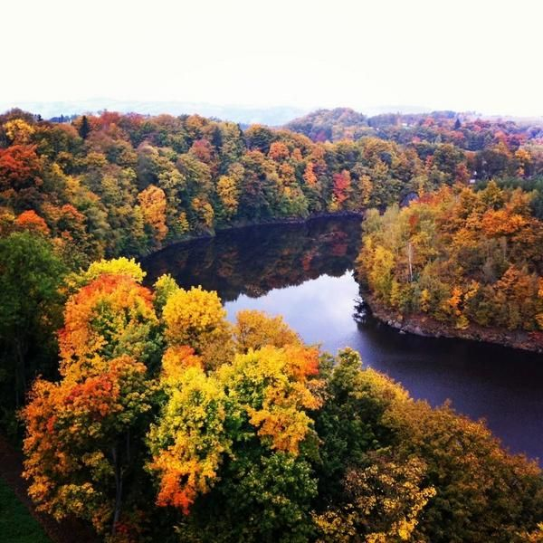 "24.10.2014 - From @velvetescape ""Gorgeous #fall colors in Lower Silesia, Poland #FriFotos"""