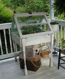 """""""Little table greenhouse"""" - great use for all of those old windows I have stacked up in the shed, plus a leeetle bit of a greenhouse/cold frame."""