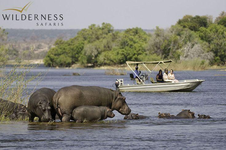 The River Club - why not enjoy a peaceful boat cruise along the Zambezi River #Safari #Africa #Zambia #WildernessSafaris