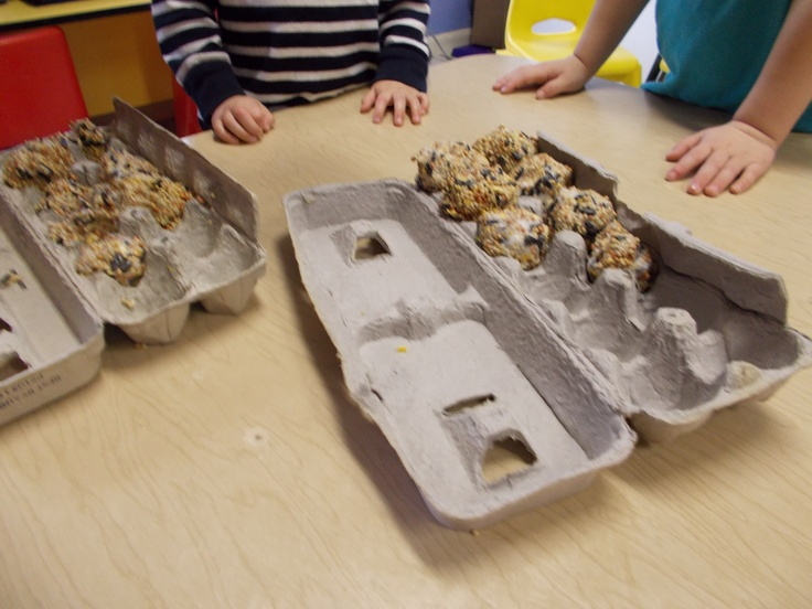Make your own bird feeder! This is a great sensory exercise and nature lesson. Take a scoop of Crisco Vegetable Shortening and use your hands to roll it into a ball.  Roll the ball in bird seed and hang it up outside. Take a seat by the window and watch all the different feathered friends that stop by for a snack.