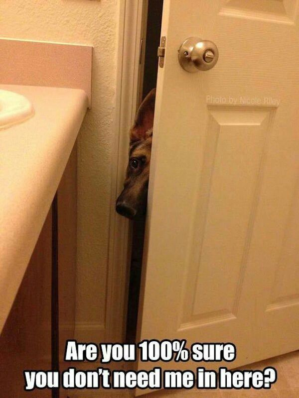 Copper when I go in the bathroom