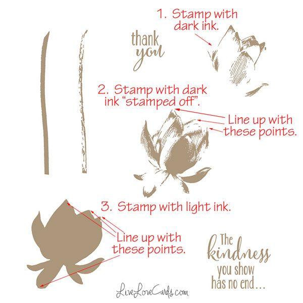 Lotus Blossom Instructions