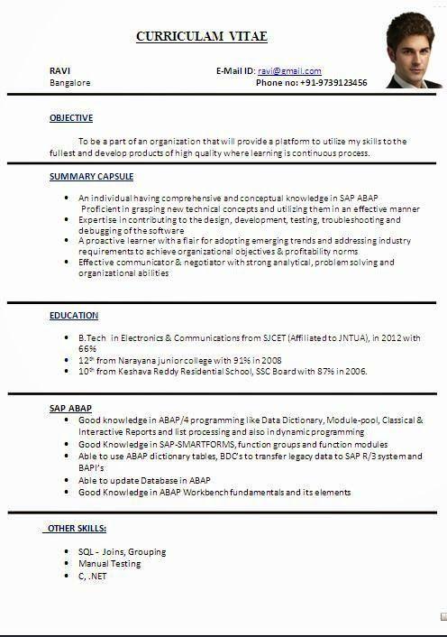 cv format in word file sample template ofbeautiful curriculum vitae    resume format with career