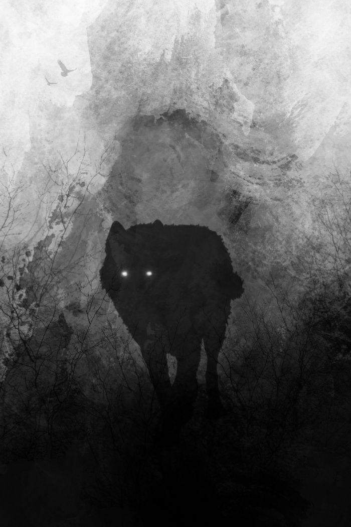 .: Dreamscape :. by WhiteSpiritWolf on DeviantArt |White Wolf And Black Wolf Art