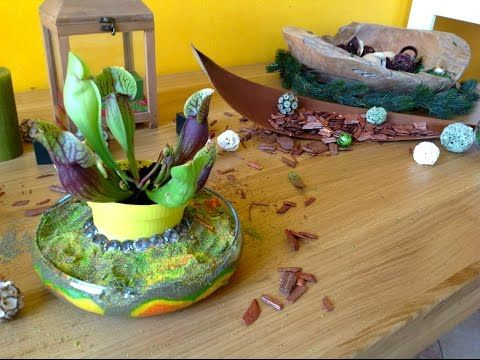 A great way to decorate a flower that is in a vase with water: using coloured sand to make it look more interesting