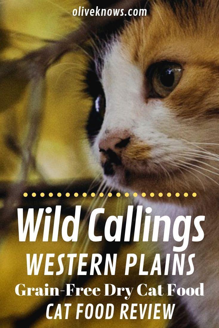 Wild Calling Western Plains Getreidefreies Katzenfutter Review