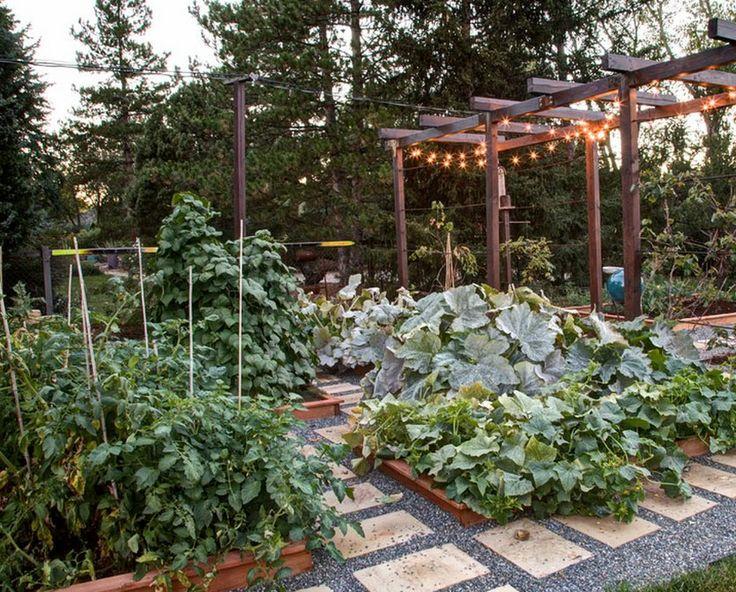 Все хотят совместить приятное с полезным, и на этот раз на помощь приходят красивые овощные грядки. Красивые грядки на огороде или в саду, или в месте отдыха семьи могут выполнять роль элемента декора не хуже, чем клумба или горшки с цветами