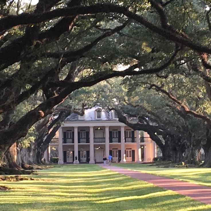 Pin on all about oak alley plantation