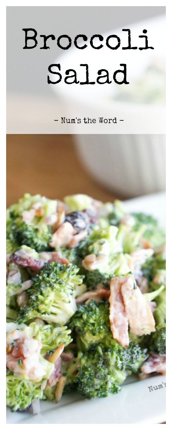 Broccoli Salad is our new favorite make ahead side dish! Simple ingredients tossed together for a tasty picnic or barbecue that is SOOOO good!