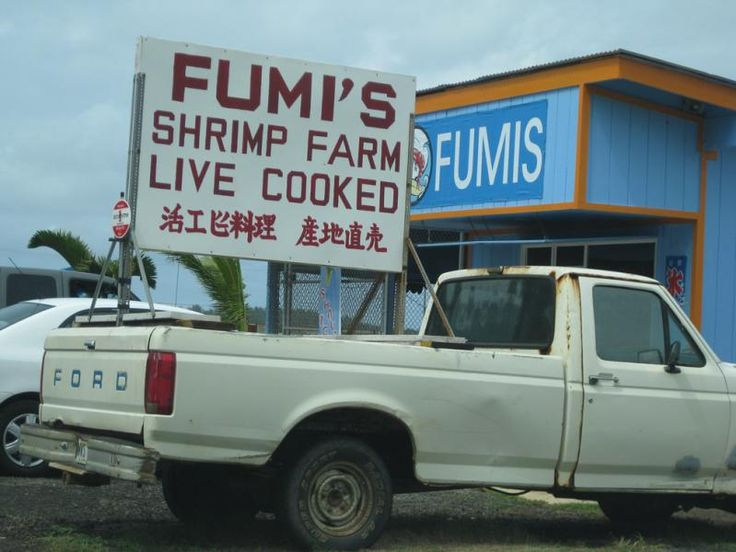 Oahu's North Shore Shrimp Truck - Fumi's, I'd go back to Hawaii just to eat at this place again!