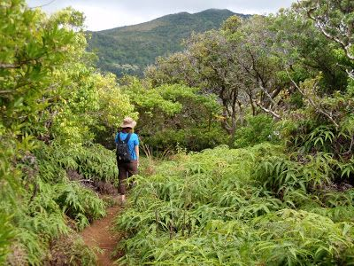 Top Trails: Hiking on Maui: Hidden Hiking Trails in West Maui