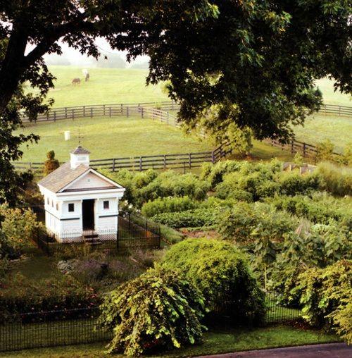 garden shedDreams Barns, Farms Gardens, Chicken Coops, Little Gardens, Vegetables Gardens, Hors Farms, Martha Stewart, Chicken House, Dreams Gardens