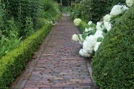 Afbeeldingsresultaat voor paadjes in de tuin