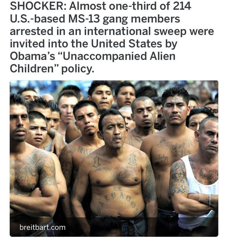 "107 Likes, 1 Comments - Alternative News Media (@alternative_news_media) on Instagram: ""Almost one-third of 214 U.S.-based MS-13 gang members arrested in an international sweep were…"""