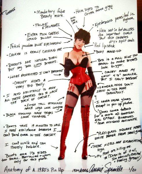Sexual anatomy surveys