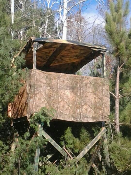 Hunting blind built by me and my kids.