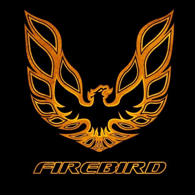 Symbol that will live forever! #firebird #pontiac #transam #liveforever #firechicken #gto #mustang #camaro #corvette #americanmuscle #musclecars #americanmade