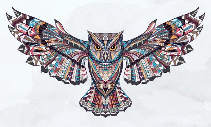 Owl Symbolism, owl meaning, Owl picture by Avia Venefica