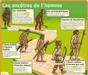 Les ancêtres de l'homme - Le Petit Quotidien, le seul site d'information quotidienne pour les 6 - 10 ans !