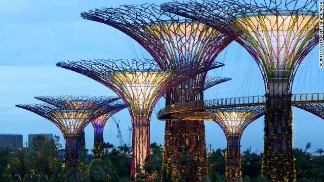 Singapore's 'super trees' - The man-made mechanical forest consists of 18 supertrees that act as vertical gardens, generating solar power, acting as air venting ducts for nearby conservatories, and collecting rainwater. To generate electricity, 11 of the supertrees are fitted with solar photovoltaic systems that convert sunlight into energy, which provides lighting and aids water technology within the conservatories below.