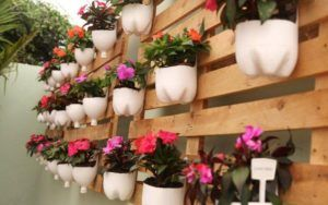 jardim-de-flores-diversas-com-garrafas-pet-cortadas